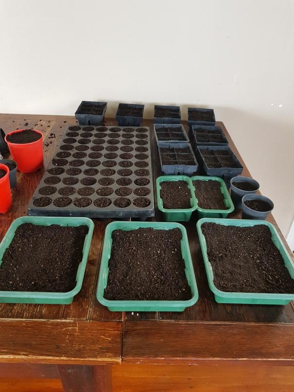 Seed raising mix