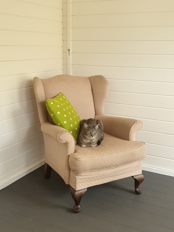 My office shed chair