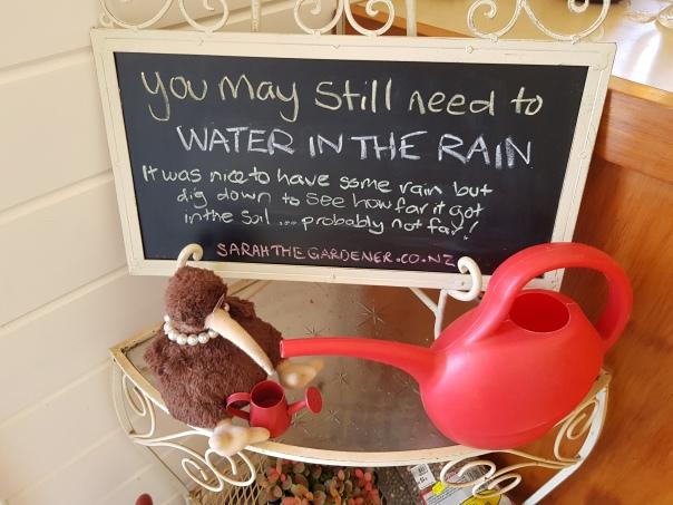 Sarah the Gardener Monday Message