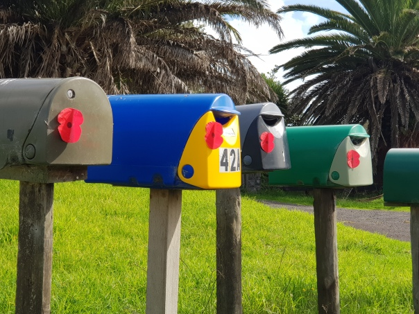 Poppies on letterboxes