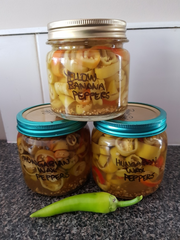 Yellow banana and hungarian wax peppers