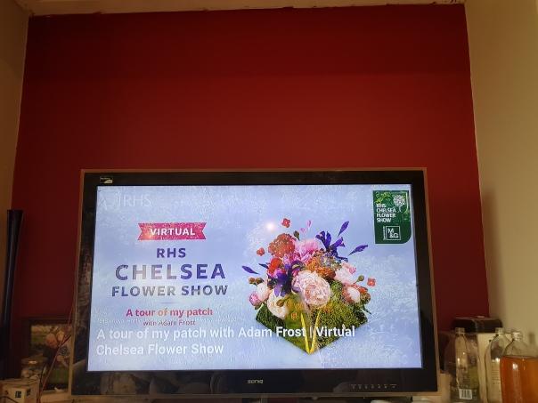 Virtual Chelsea Flower Show
