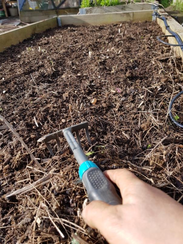 rake away the old debris
