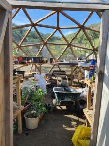 messy greenhouse