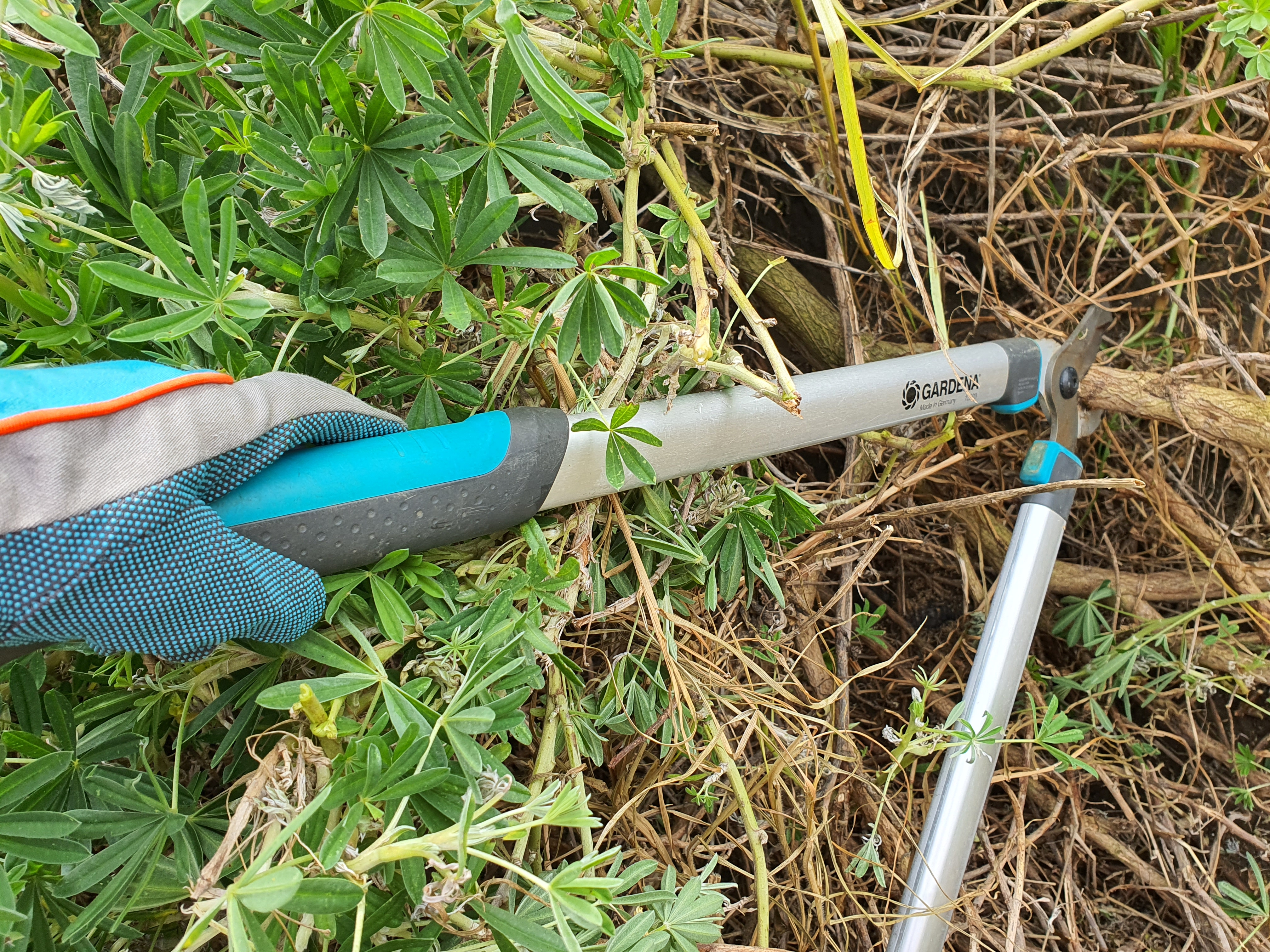 GARDENA Pruning Lopper EasyCut 680 B