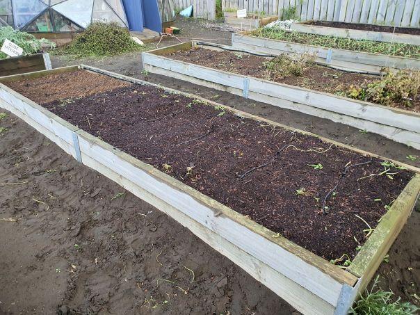 Garden bed spring ready