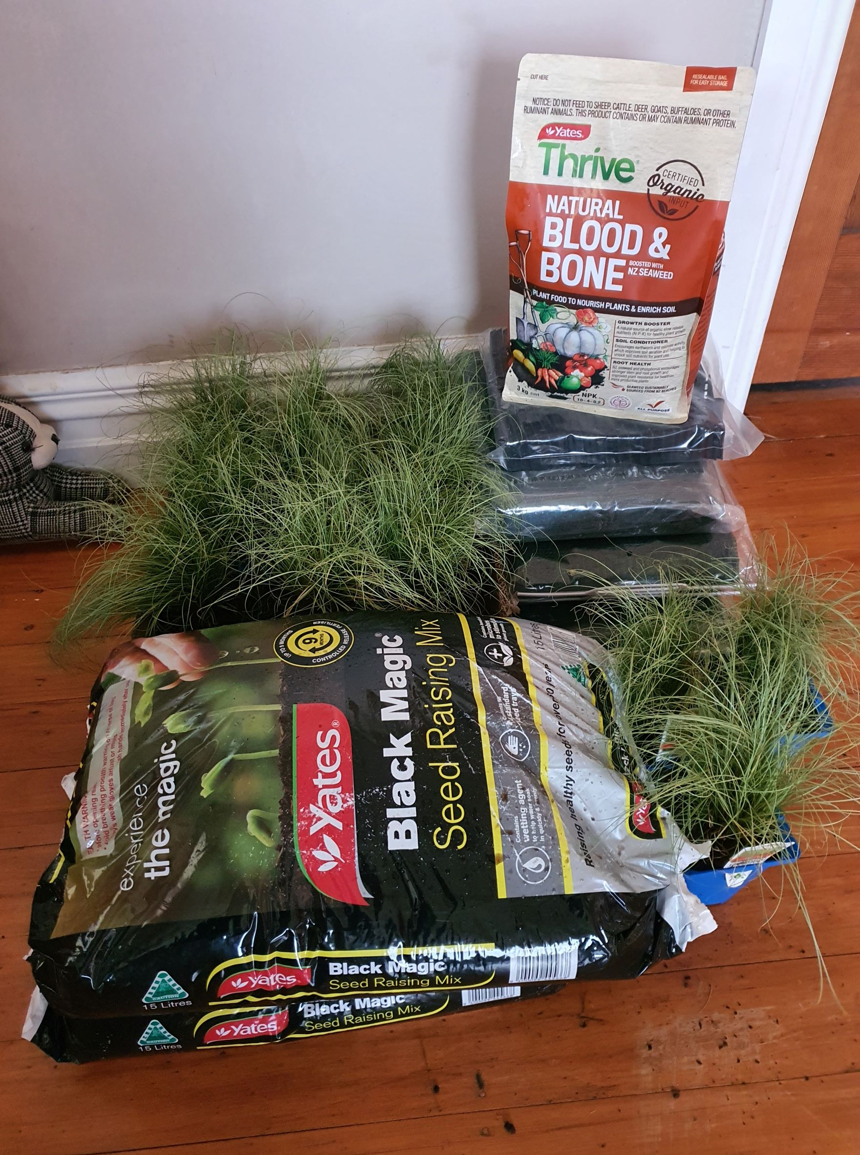 seed and garden supplies