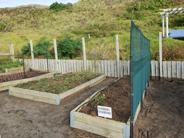 Fruit sector repaired